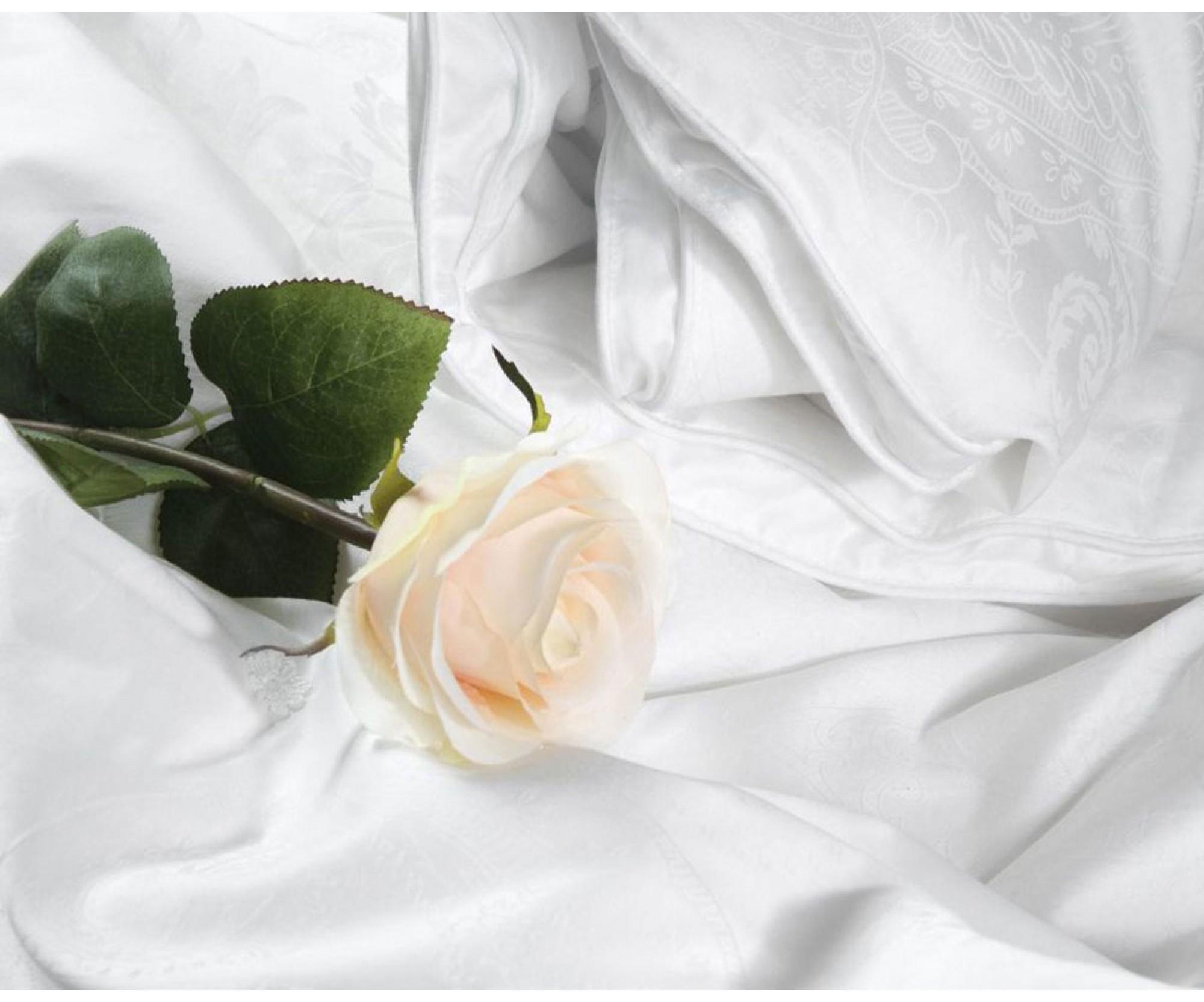 Одеяло круглое «Шелк в тенселе» Silk